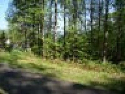Carroll County, Grayson County Residential Lots & Land For Sale: Tbd Old Home Trail