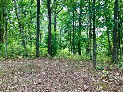 Carroll County, Grayson County Residential Lots & Land For Sale: Lot 60 Mountain Pine Trail