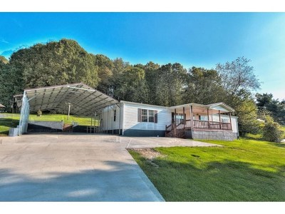 Meadowview Manufactured Home For Sale: 12472 Devault Lane