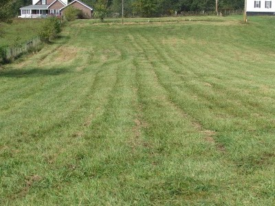 Wytheville Residential Lots & Land For Sale: 1445 Cripple Creek