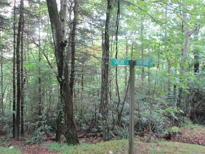 Carroll County Residential Lots & Land For Sale: Tbd Cascade Trail