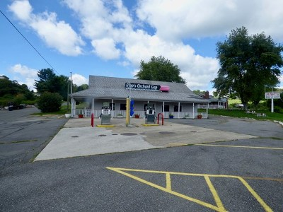 Carroll County, Grayson County Commercial For Sale: 1113 Dusty Ridge Road