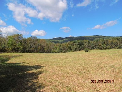 Max Meadows Residential Lots & Land For Sale: Tbd Felts Lane