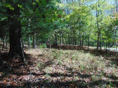 Grayson County Residential Lots & Land For Sale: Lot #6 Rio Vista Lane