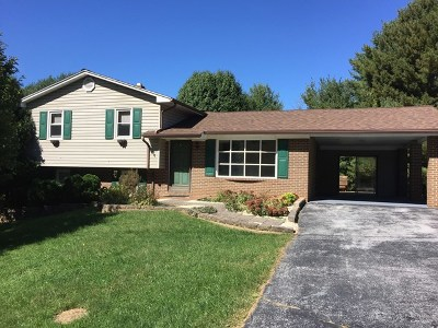 Galax Single Family Home For Sale: 109 Greenhaven