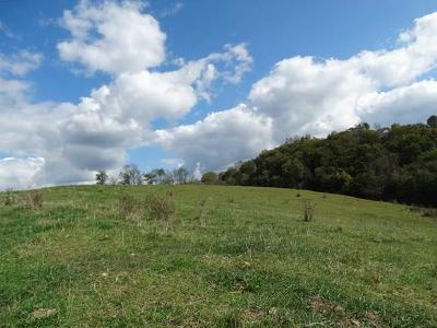 Carroll County Residential Lots & Land For Sale: Tbd Pilgrims Trail