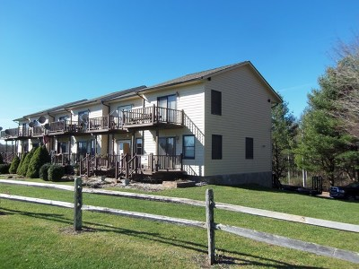 Carroll County Condo/Townhouse For Sale: 672 Evergreen Trail Unit 2