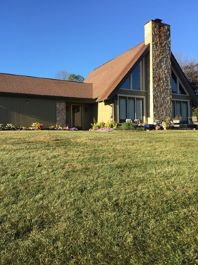 Wytheville Single Family Home For Sale: 1268 Black Lick Rd