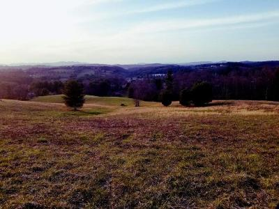 Galax Residential Lots & Land For Sale: Tbd Natural Ln