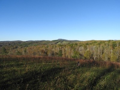 Carroll County, Grayson County Residential Lots & Land For Sale: Tbd Danville Pike