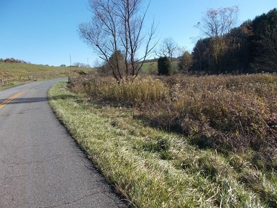 Grayson County Residential Lots & Land For Sale: Tbd Meadow Creek Road
