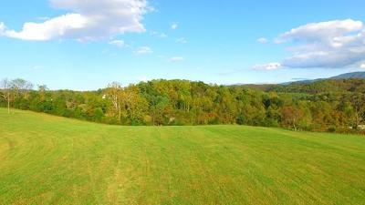 Abingdon Residential Lots & Land Active Contingency: Tbd Misty Rd