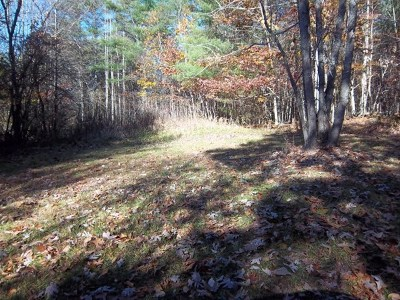 Carroll County, Grayson County Residential Lots & Land For Sale: Tbd Pine Crest Dr.