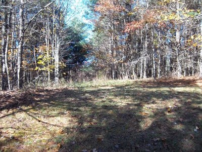 Galax VA Residential Lots & Land For Sale: $40,000