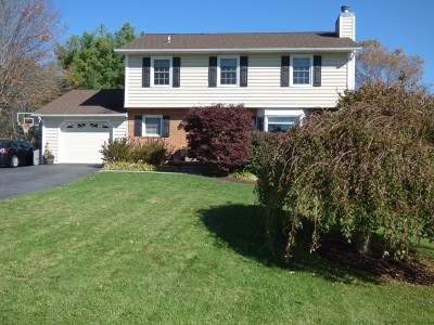 Wytheville Single Family Home For Sale: 440 Arrow Lane