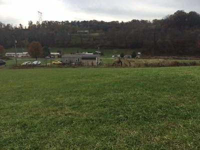 Rural Retreat Residential Lots & Land For Sale: Tbd Rural Retreat Lake Road
