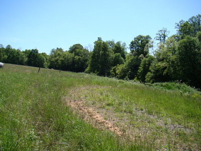 Carroll County, Grayson County Residential Lots & Land For Sale: 840 Arrowhead Road
