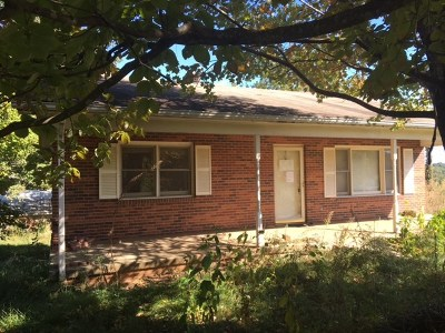 Carroll County Single Family Home For Sale: 1194 Pauls Creek Rd.