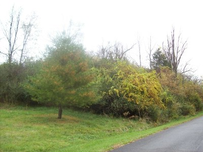 Marion Residential Lots & Land For Sale: Grubmore Road