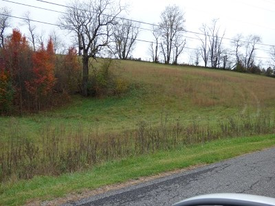 Wytheville Residential Lots & Land For Sale: Tbd Petunia Road