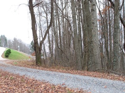 Carroll County, Grayson County Residential Lots & Land For Sale: Tbd Pine Mountain Drive