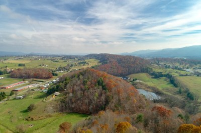Wytheville Residential Lots & Land For Sale: 67 Acre Petunia Rd