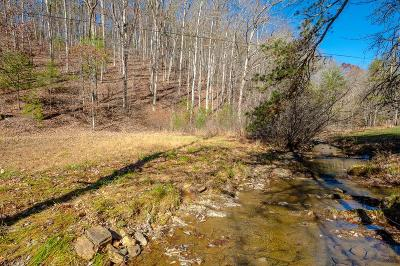 Wytheville Residential Lots & Land For Sale: Tbd Mudlick Rd