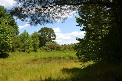 Grayson County Residential Lots & Land For Sale: Tbd Fish Pond Dr.