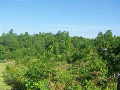 Carroll County Residential Lots & Land For Sale: Tbd Buck Wood Road