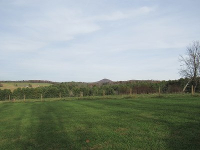 Carroll County Residential Lots & Land For Sale: Tbd Hunter's Ridge