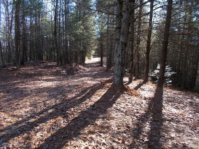 Carroll County, Grayson County Residential Lots & Land For Sale: Tbd Lime Kiln Rd