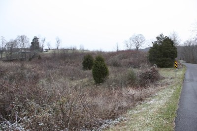 Marion Residential Lots & Land For Sale: Tbd Fox Valley
