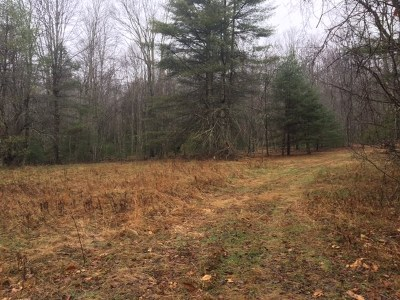 Damascus Residential Lots & Land Active Contingency: Tbd Lumberton Road