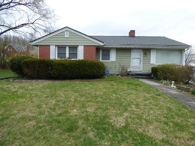 Wytheville Single Family Home For Sale: 490 Lee Highway