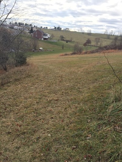 Wytheville Residential Lots & Land For Sale: Tbd Wythe View Ln