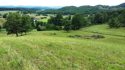 Bland Residential Lots & Land For Sale: 2900 Waddletown Rd