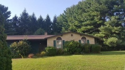 Galax Single Family Home For Sale: 104 King Arthur Ct