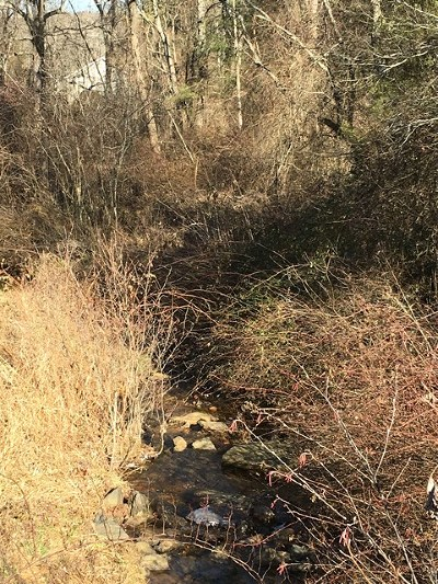 Carroll County, Grayson County Residential Lots & Land For Sale: 2391 Breezy Ridge Rd