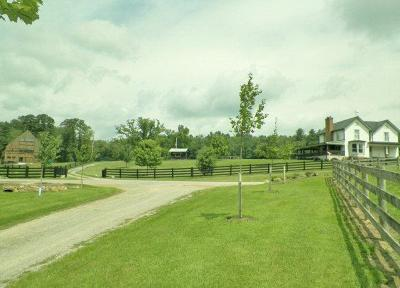 Wythe County Single Family Home For Sale: 736 Zion Church Road