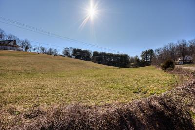 Bristol Residential Lots & Land For Sale: Tbd Bordwine Rd
