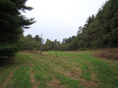 Carroll County, Grayson County Residential Lots & Land For Sale: Tbd Frog Spur Rd