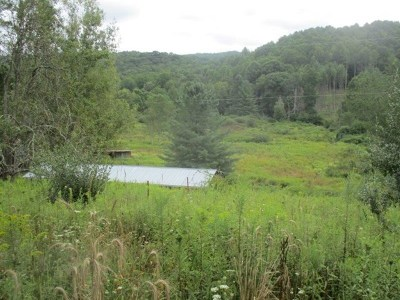 Carroll County, Grayson County Residential Lots & Land For Sale: 523 Home Place