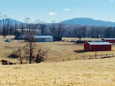 Wytheville Residential Lots & Land For Sale: 1655 Cripple Creek Rd