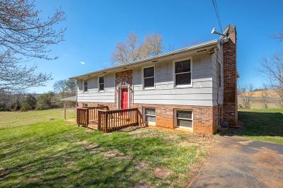 Wytheville Single Family Home For Sale: 610 Austinville Road