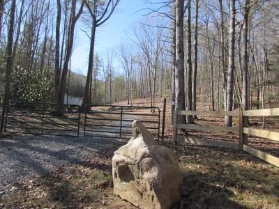 Wytheville Residential Lots & Land For Sale: Tbd Mule Hell Rd