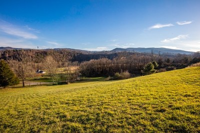 Wytheville Residential Lots & Land For Sale: Tbd Echo Valley Road