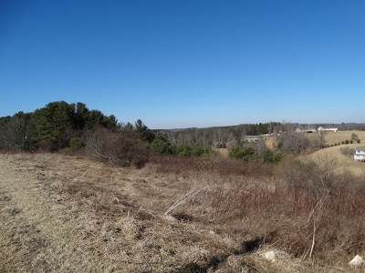 Galax, Woodlawn, Hillsville, Fries Residential Lots & Land For Sale: Tbd Honeycutt Dam Road