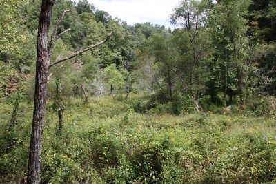 Bristol Residential Lots & Land For Sale: Tbd Lone Star Road, Lot 8