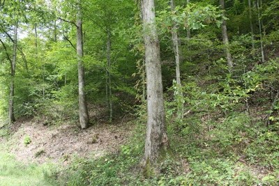 Bristol Residential Lots & Land For Sale: Tbd Lone Star Road, Lot 9