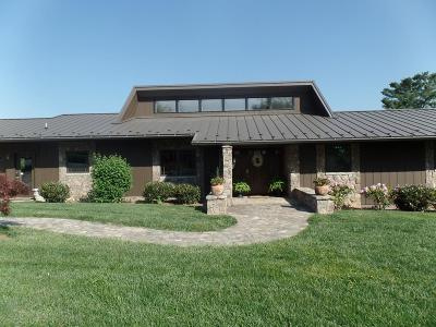 Abingdon Single Family Home For Sale: 117 Crestview Drive